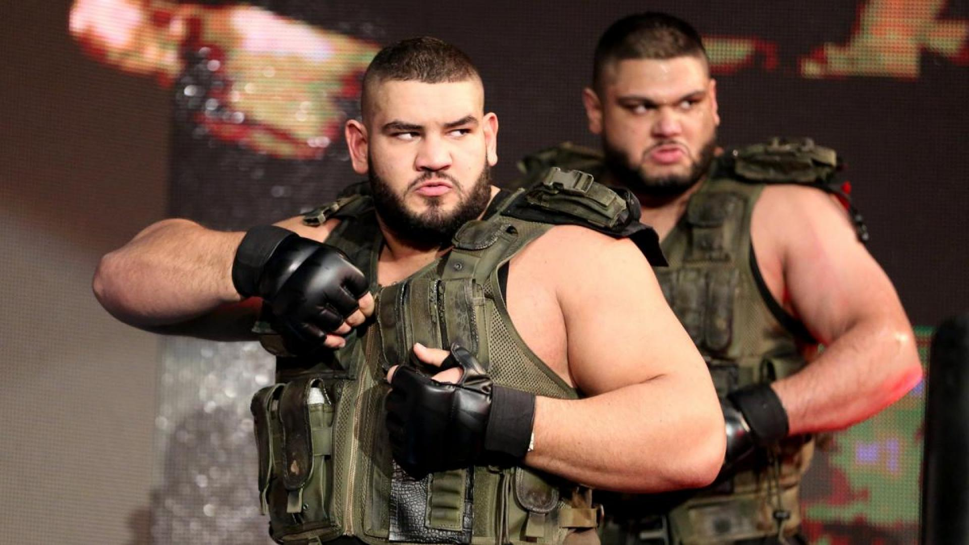 The Authors of Pain Return
