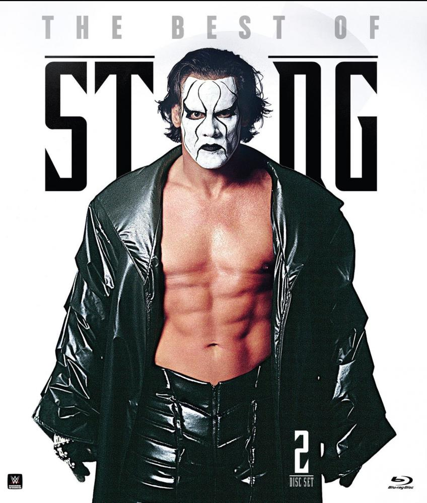 WWE Legend Mick Foley On His Match with Sting