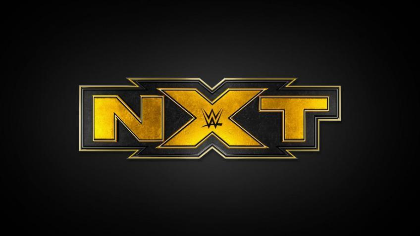 *Spoiler* Mercedes Martinez made her surprise return to WWE NXT
